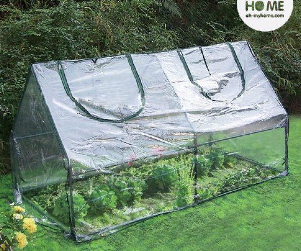 serre de jardin transparente