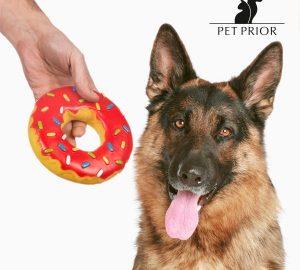 jouet donuts chiens